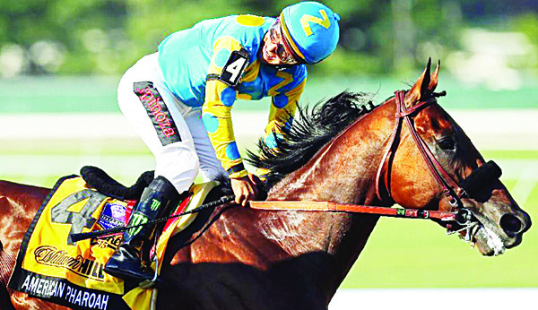 Victor Espinoza, riding atop American Pharoah, reacts after winning the 48th William Hill Haskell Invitational at Monmouth Park on Aug 2, 2015 in Monmouth, New Jersey (AFP)