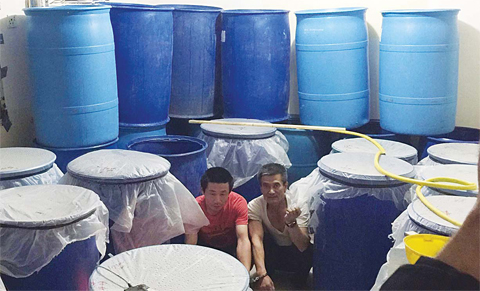 The two Asians arrested in the liquor factory raid