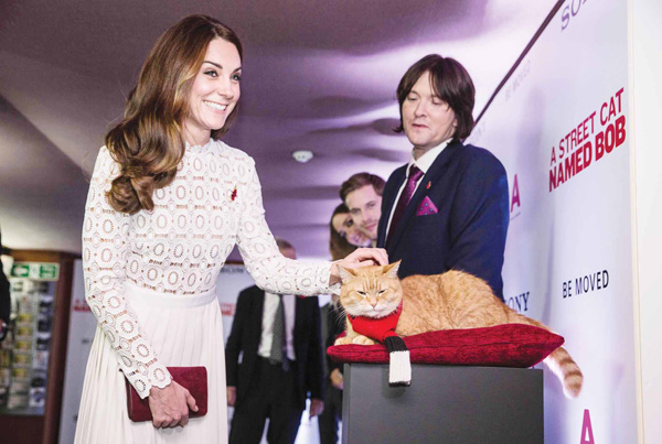 Britain's Catherine (left), Duchess of Cambridge greets Bob the cat the star of the new film 'A Street Cat Named Bob' by his owner James Bowen at the film's premiere in London on Nov 3. (AFP)