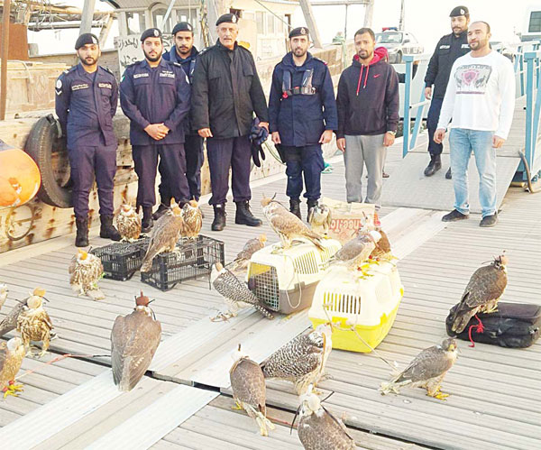 Coast Guard officers and the seized falcons
