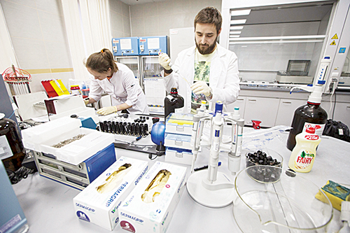 India plans WADA appeal for early test lab 'reinstatement